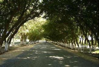 也门勒乡汽车救援电话