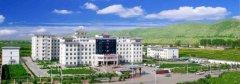 临洮县汽车救援,临洮县道路救援,临洮县拖车救援电话